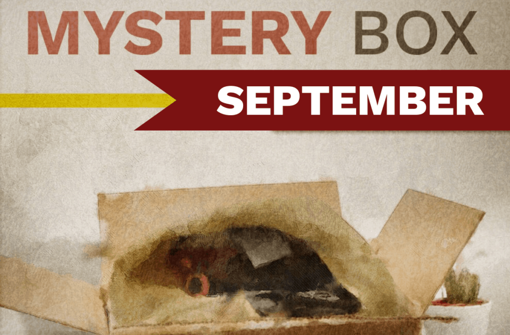 Kellyco Mystery Box promotional image for September