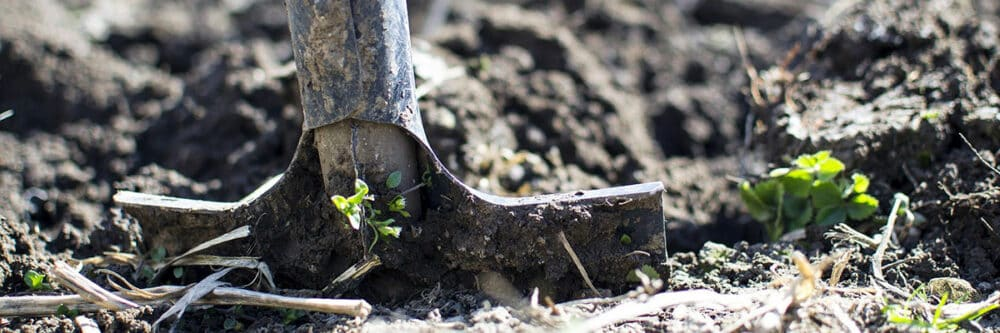 build a metal detecting test garden to help hone your skills